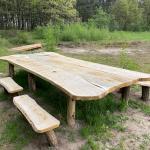 Rondom de Theetuin 2 – Familie-picknick-tafel